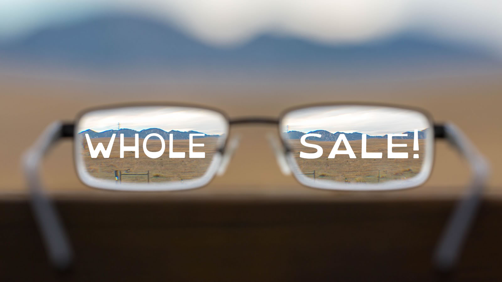 Argument for you to Focus on Wholesale
